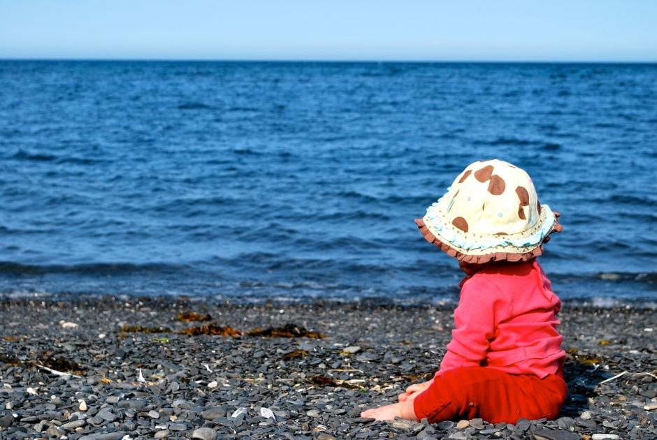Roukie contemple la mer